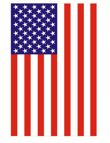 US military large vertical US flag