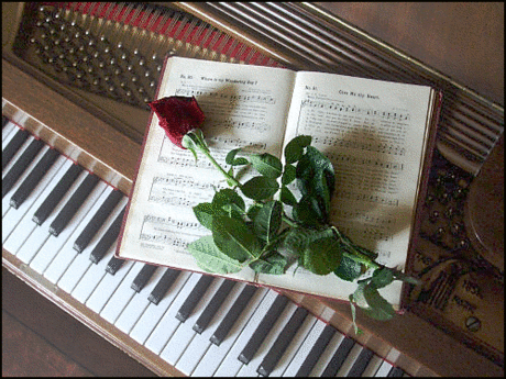 piano w rose