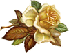 beautiful rose clip art