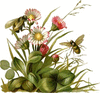 bees flowers clip art