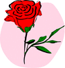 coloured rose clip art
