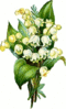 lily of the valley 3 clip art