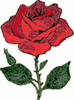 rose drawing clip art