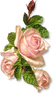 three pink roses clip art