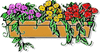 window box clip art