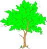Tree 099 clip art