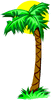 palm tree 4 clip art