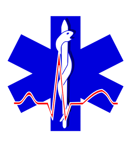 Blue paramedic cross 01