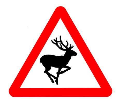 Street Road Sign bambi