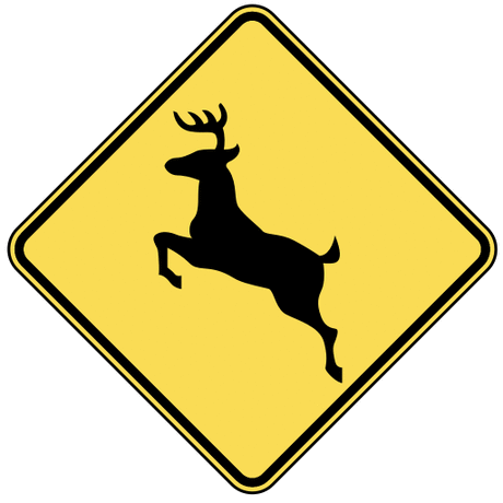 warning street sign deer crossing