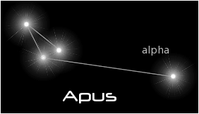 constellation apus black