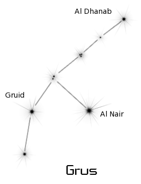 constellation grus