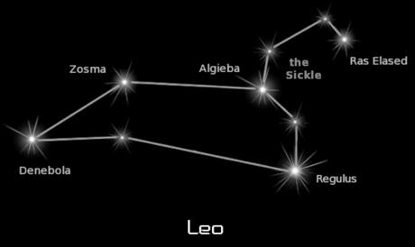 constellation leo black