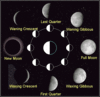 Moon Phases clip art