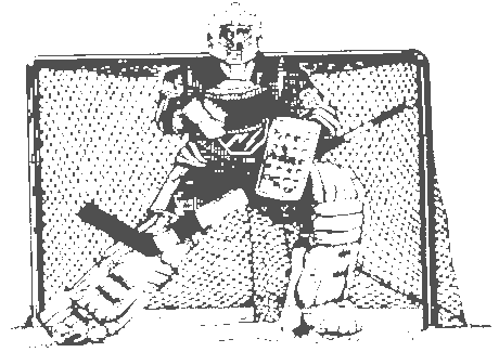ice hockey 12