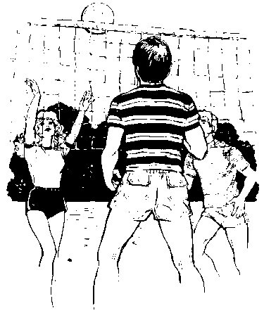 volleyball outdoor