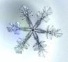 http://www.pdclipart.org/albums/Weather/thumb_snow_snowflake_image.png